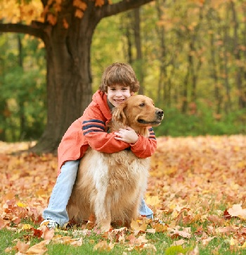 Best Age To Bond With A Dog
